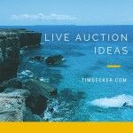 Live Auction Ideas for your next charity event