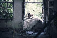 Untitled by ILONA BITZ on 500px
