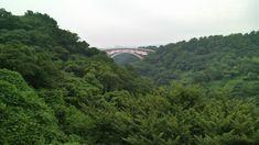 Bridge to Cheonjeyeon Falls Jeju, South Korea