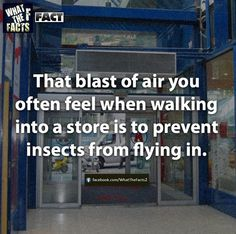 Ohhhhhhhhhhhhhhhhhhhhhhhh. I always wondered. When I was younger, I thought it was to just give you a nice little blast of warmth right before you walked into the store so you'd feel more at home :)