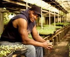 Will Allen is an organic urban farmer... changing lives, love this guy!