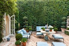 Interior designer Mark.D.Sikes loves greenery almost as much as his signature colours of blue and white. Image originally appeared in Beautiful: All-American Decorating and Timeless Style by Mark D. Sikes (Rizzoli, Approx $45), available now.