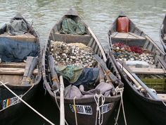 Danube delta lotcas with fishing nets