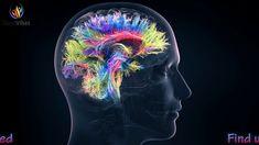 Super Brain Energizer ✔ Increase Brain Energy ✔ Gamma Binaural Beats ✔ S...