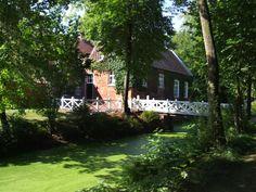 Der Park sowie der Wald mit seinen Buchen- und Lindenalleen um das Gut Stikelkamp in Hesel laden zu ausgedehnten Spaziergängen ein.