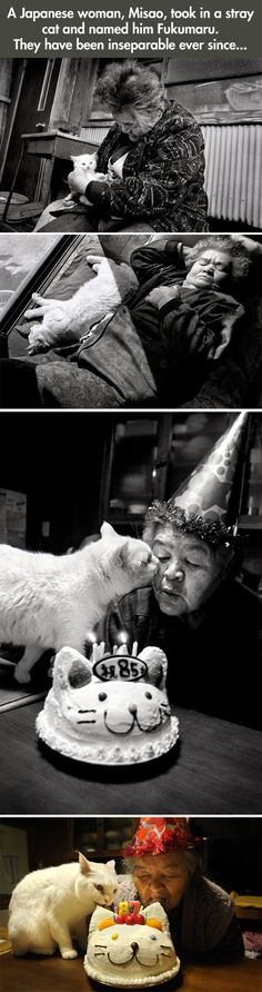 friends. (more pictures here: http://themetapicture.com/japanese-woman-and-her-kitty-best-friend/)