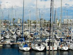 Beautiful sailboats in the Barcelona Harbour, Spain