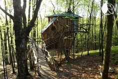 This Vermont tree house practically disappears in the woods. With living trees intermingling with the structure inside and out and made from all local materials or reclaimed elements, this tree house gives its guests a true experience with nature. Enveloped by lush greenery and uniquely designed to take in all of the surrounding forestry, this tree house is truly one-of-a-kind. Take a day trip to one of Vermont's most well-known trails or take a kayak on nearby Lake Saint Catherine. Here ...