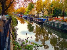 A painter captures an autumnal scene on Regent's Canal in north London with its colourful . They are the veins that run through our cities and countryside - Britain's rivers, canals and tributaries have kept the nation connected through the centuries. Regents Canal, Autumn Scenes, Canal Boat, Narrowboat, London Photos, London England, Places To See, Countryside, Britain