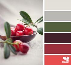 berried hues