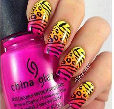 Cheetah & zebra