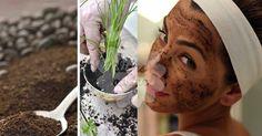 Incrível! Conheça 9 utilidades para as borras de café! - # #borradecafé #cabelo #celulite #mosquitos #plantas #rosto