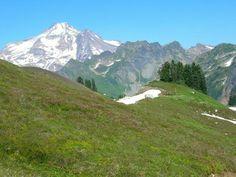 Pacific Crest Trail (PCT) Section K - Stevens Pass - East to Rainy Pass — Washington Trails Association