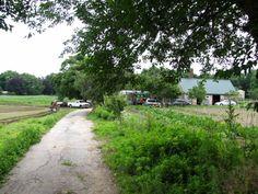 Sergei Farms, Belmont, MA.  http://marcphotogallery.com/sergei-farms-belmont.html