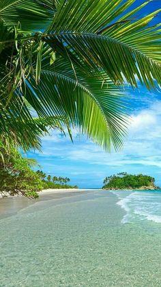 Tropical Beaches With Palm Trees Beach Wallpaper, Nature Wallpaper, Wallpaper Wallpapers, Dream Vacations, Vacation Spots, Tropical Beaches, Beach Landscape, Beach Fun, Beach Walk