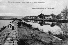 vise2.jpg (1545×1020)