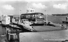 Vermaat, Hellevoetsluis een bus met kenteken SB-82-01 op de veerpont Brielle-Rozenburg met bestemming Hellevoetsluis omstreeks 1964