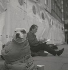 How homeless London artist John Dolan turned things around - thanks to George... http://www.we-heart.com/2014/07/17/john-dolan-john-and-george-at-howard-griffin-gallery-london/… pic.twitter.com/SSAW3SkJB2