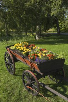 http://giveyourreview.hubpages.com/hub/Unique-Gardening-Ideas