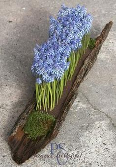 Leuk idee om bloembolletjes in een stuk boomstronk te planten. Foto komt van Pinterst.com