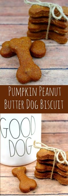 Healthy Dog Treats Homemade Pumpkin Peanut Butter Dog Biscuit Recipe- This Easy Homemade Dog Biscuit recipe is perfect for your dog. What dog wouldn't love Peanut Butter dog biscuits. Dog Biscuit Recipe Easy, Dog Biscuit Recipes, Dog Treat Recipes, Dog Food Recipes, Easy Recipes, Homemade Dog Cookies, Homemade Dog Food, Homemade Biscuits, Pumpkin Dog Treats Homemade