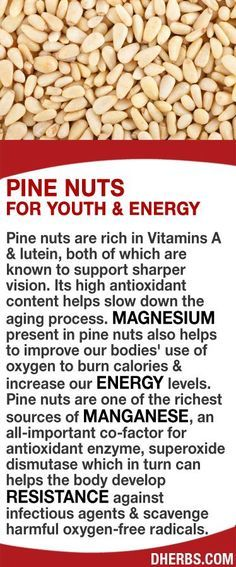 Pine nuts are rich in Vitamins A & lutein, both known to support sharper vision. Its high antioxidant content helps slow down the aging process. Magnesium present in pine nuts helps to improve our bodies' use of oxygen to burn calories & increase our energy levels. They are one of the richest sources of manganese which in turn can helps the body develop resistance against infectious agents & scavenge harmful oxygen-free radicals. #dherbs