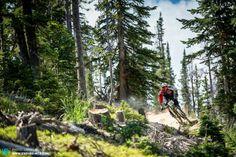 Mountain biking bike MTB