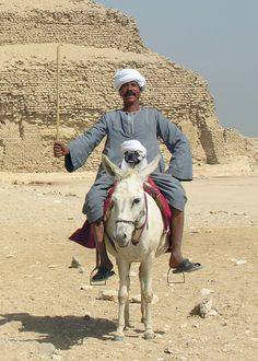 SAQQARA - EGYPT