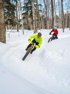 46 Best Fat Bikes images  87671caa4