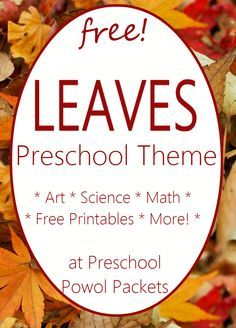 Leaf Activities for Preschool Leaf Theme Preschool Themes - Crafts, Science Experiments, & More! Fall Preschool Activities, Preschool Curriculum, Free Preschool, Preschool Science, Preschool Lessons, Preschool Learning, Science Crafts, Homeschooling, Science Experiments