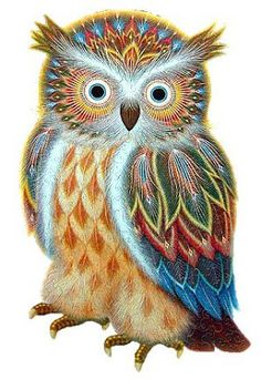 Peter ren DIY Diamond painting Crafts animal square icons mosaic Full Embroidery gift paintings Coloring by numbers Color owl Cute Birds, Cute Owl, Bird Drawings, Cartoon Drawings, Colorful Bird Tattoos, Owl Artwork, Owl Pictures, Owl Cartoon, Beautiful Owl