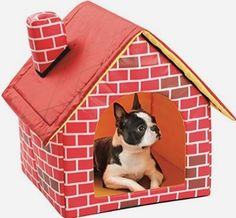Portable Brick Dog House       Buy it now >>>>>   http://amzn.to/29tcFu1