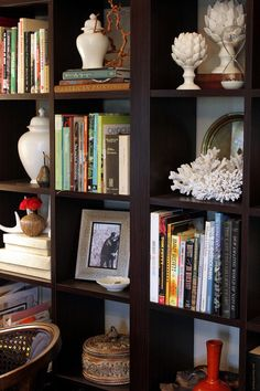 Gorgeous  styled bookcase with white accents to add interest/contrast to dark shelves