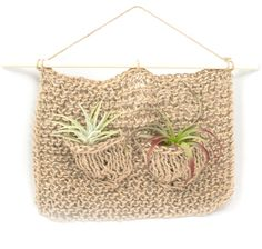 A little home for your air plants!