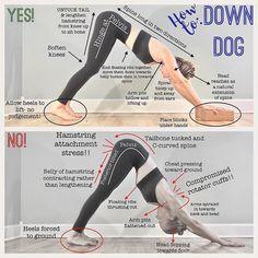 Fitness Workouts, Yoga Fitness, Pilates Workout, Butt Workout, Ashtanga Yoga, Vinyasa Yoga, Bikram Yoga, Kundalini Yoga, Yoga Routine