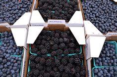 Fresh blueberries and blackberries.