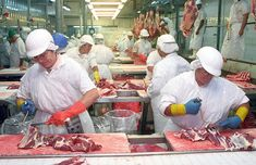 Alianza entre el gobierno y plantas de carne bovina