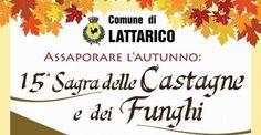 15^ Sagra delle Castagne e dei Funghi - Martedì 31 ottobre e 1 novembre 2017 alle ore 17.00 a Lattarico Cs   - http://www.eventiincalabria.it/eventi/15-sagra-delle-castagne-e-dei-funghi/