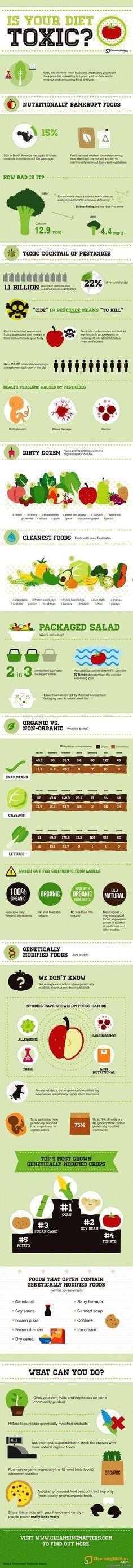 Toxic Diet Infographic... via topoftheline99.com