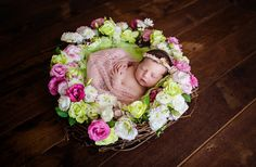 16 day old Arabella | Melbourne Newborn Photographer — Kath V - Melbourne Newborn & Baby Photography