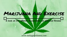 Marijuana and Exercise - A look at the effects of cannabis on physical fitness  http://dailygainsfitness.com/marijuana-and-exercise/