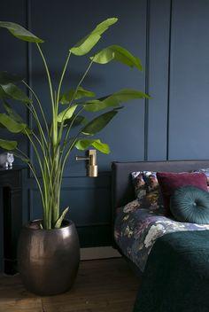 DIY sierlijsten in je slaapkamer   goed lichtplan - INTERIOR JUNKIE Bedroom Inspo, Home Bedroom, Bedroom Decor, Bedroom Ideas, Master Bedroom, Beautiful Houses Inside, Condo Decorating, House Inside, Blue Rooms