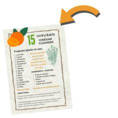 Zero Waste Cleaning: Orange Peel Vinegar Cleaner - Greenify Me Vinegar Cleaner, Tub Cleaner, Empty Glass Bottles, Glass Jars, Household Cleaning Tips, Cleaning Hacks, Orange Peel Vinegar, Orange Peels Uses, Diy All Purpose Cleaner