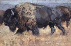 Jill Soukup - Painting of the Day - Saks Galleries Cherry Creek Denver Colorado Buffalo Painting, Buffalo Art, Animal Paintings, Animal Drawings, Bird Paintings, Acrylic Paintings, Native American Images, Wildlife Art, Artist Painting