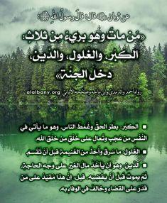 Merida, Sponge Holder, Hadith, Allah