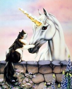 Unicorn and Cat Poster