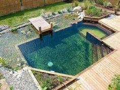 Natural pool: