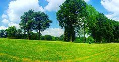 All green all blue all good #allblue #allgreen #allgood #sunnydays #enjoylife #littlethings #littlethingsthatmakemehappy #lahulpe by m_mocanu