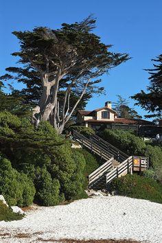 """""""Carmel Beach City Park"""" by padacek on Flickr - Carmel Beach, California"""