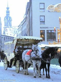 Horse Carriage, Dresden. Photo credit Jolly Sienda Photography.